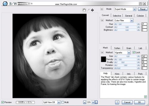 B/W Styler for Adobe Photoshop 2.0 box