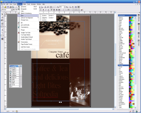 Serif PagePlus X6 16.0 screenshot