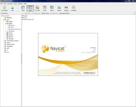 PremiumSoft Navicat Premium Enterprise 10 about