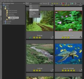 Bibble Labs Bibble Pro 5.2 for Mac screenshot